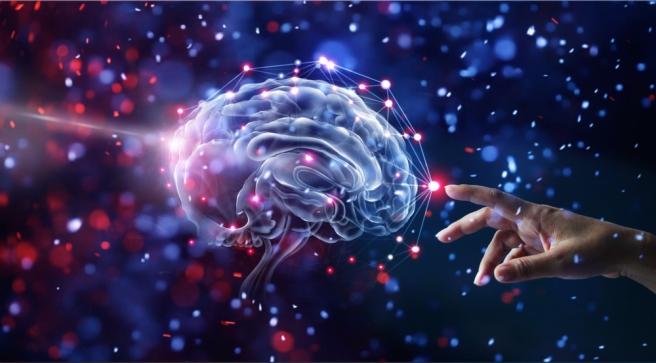 Gracias al sentido y el significado el cerebro recuerda